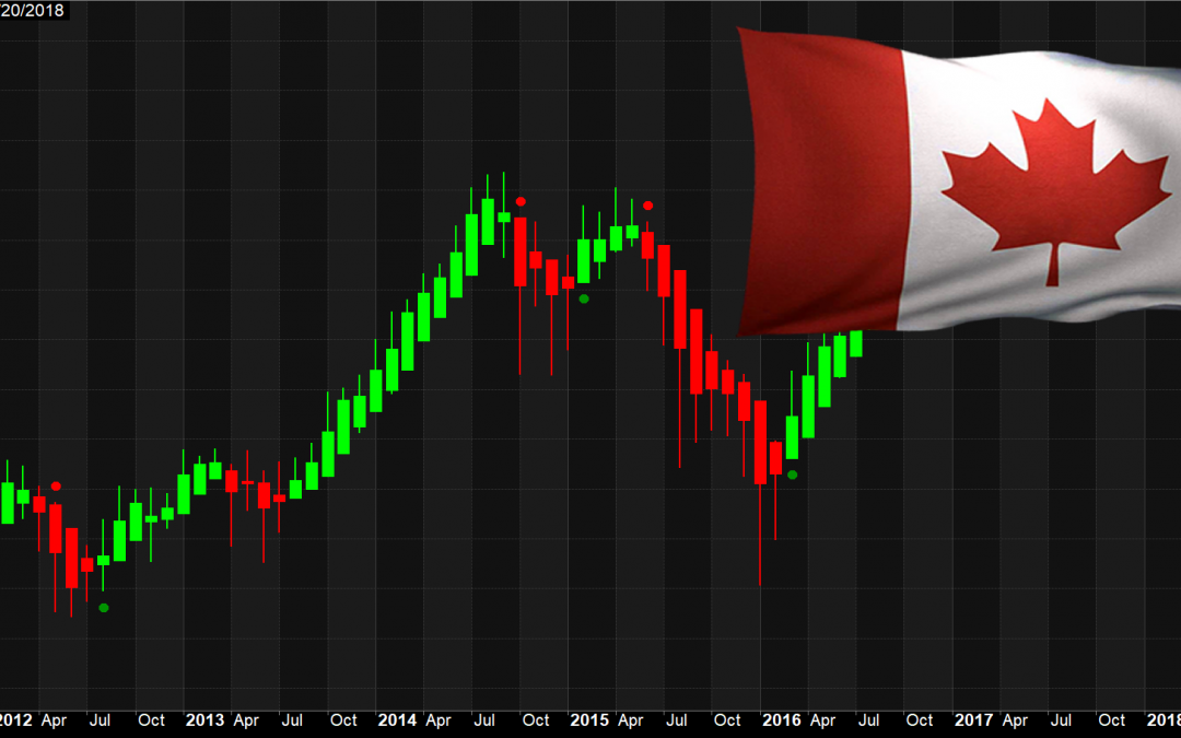 Canadian Stock Market Profits, eh?