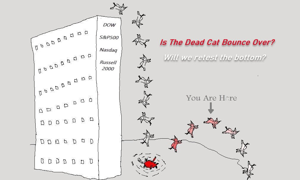 Is The Dead Cat Bounce Over?